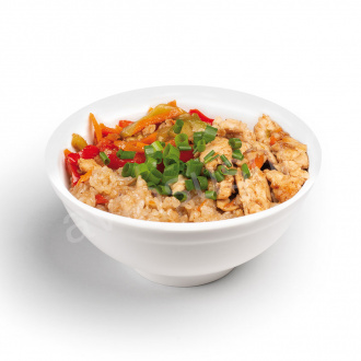 Chicken and vegetable rice